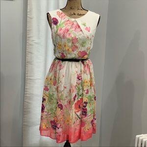 Sandra Darren gorgeous floral dress size 6 NWOT